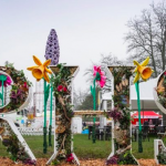 Virtual RHS Chelsea Flower Show to champion innovation