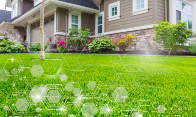 Smart Yards are Smart for Your Business