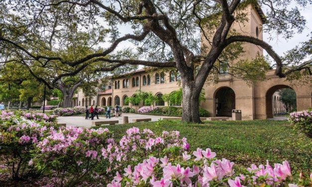 Best Schools for Landscape Architecture in the South