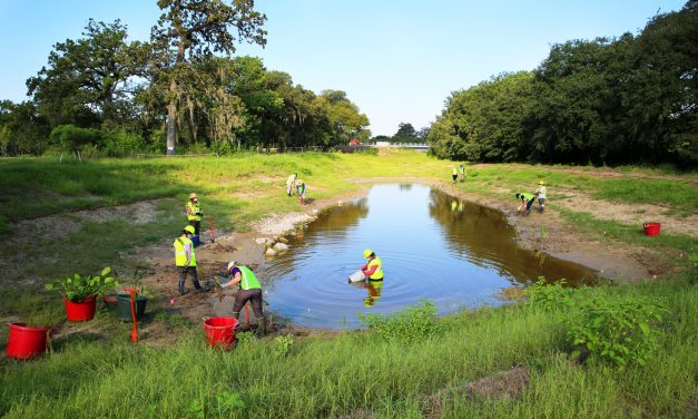 New stormwater wetland will reduce flooding, pollution