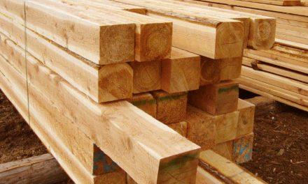 Addressing the Lumber Shortage