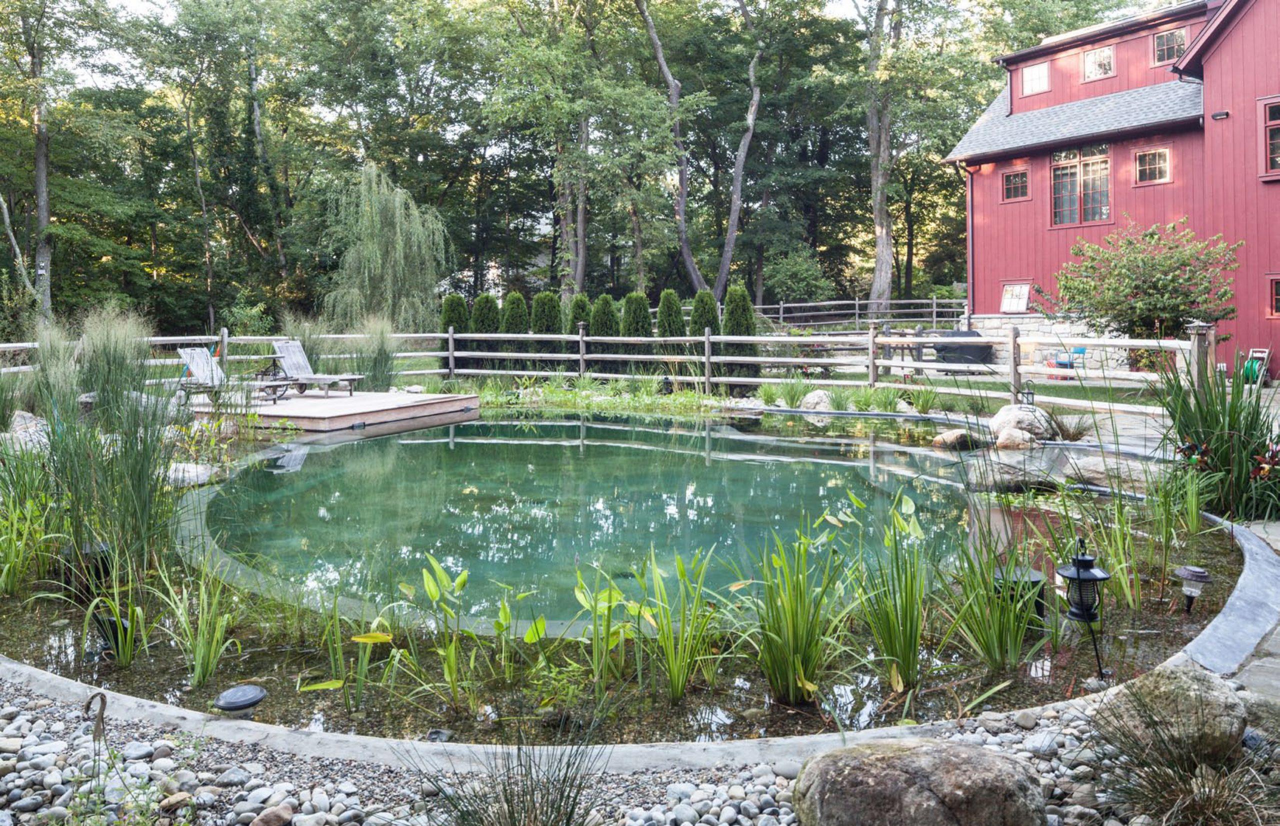 Natural Pools Connecticut