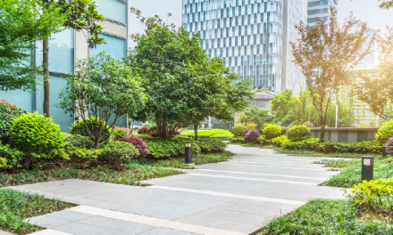 How Landscaping Supports Urban Sustainability